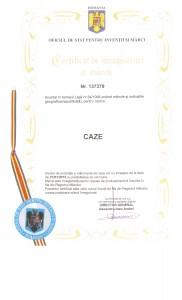 CIMCAZE 001